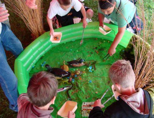 Wisconsin Outdoor Education Expo 2013