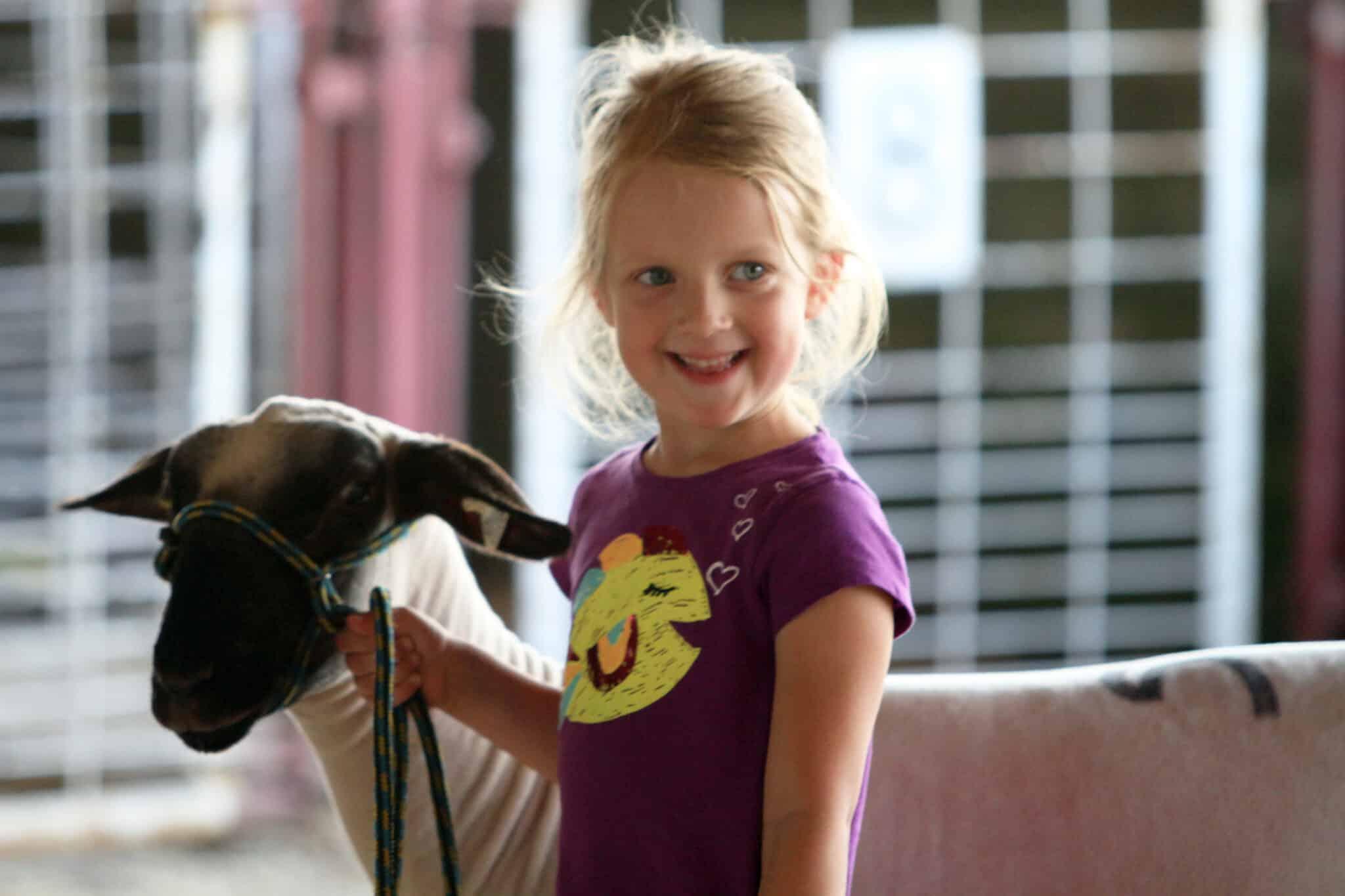 Little Shepherds Showmanship