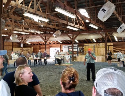 Two unique spaces available for livestock shows and auctions
