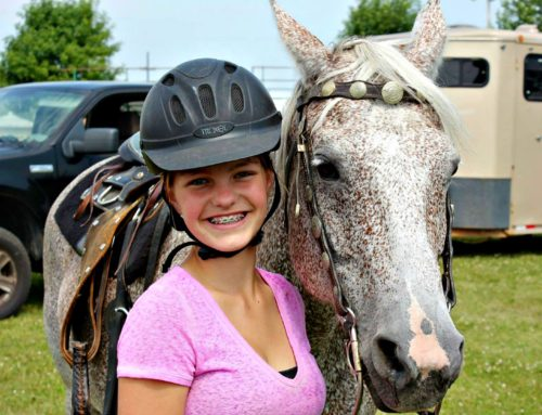 2021 Junior Fair Horse and Pony Judging Results