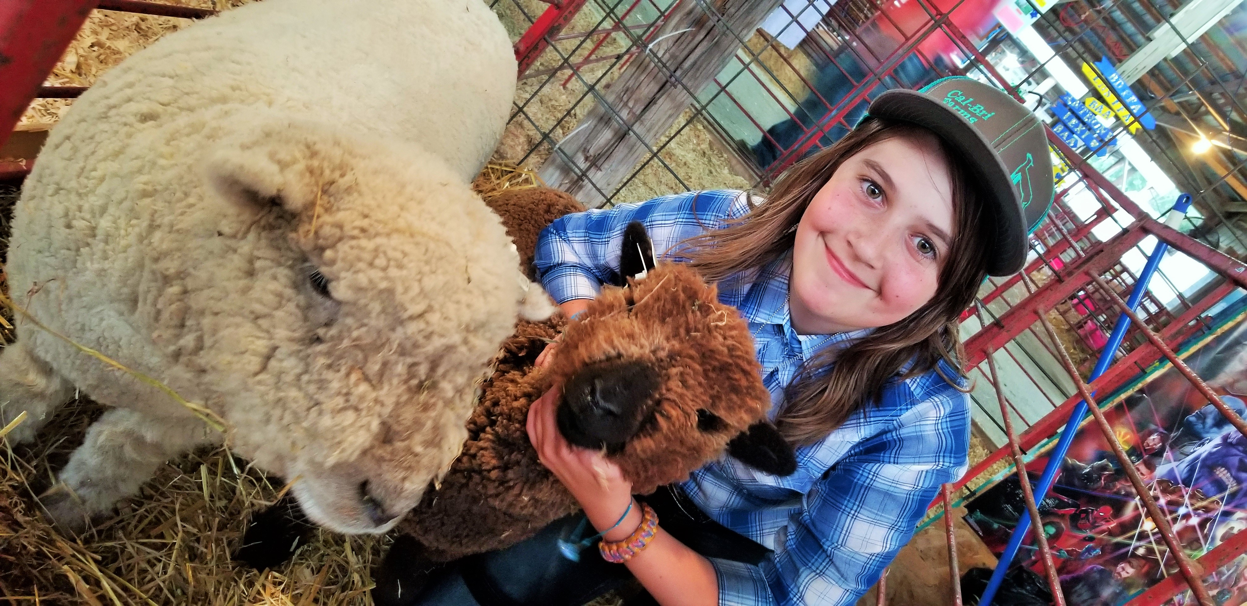 Brianna Ganske Sheep Exhibitor