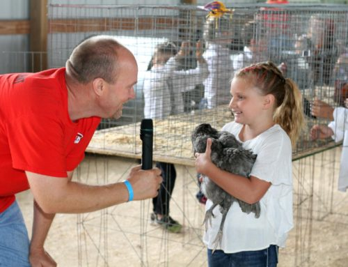 Local youth to showcase birds at special event Sunday, after cancellation of fair
