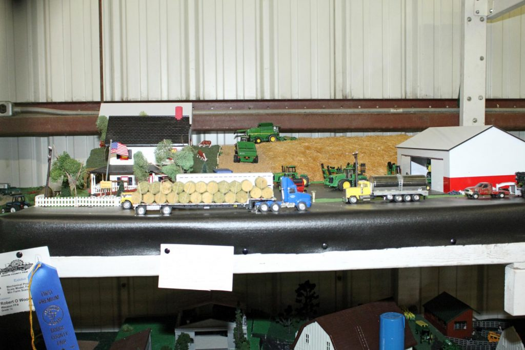 Junior Fair Farm Scene Entry