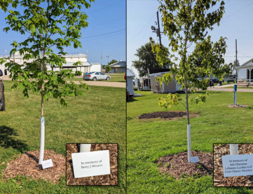 Sponsor a Shade Tree or Picnic Table at the Dodge County Fair