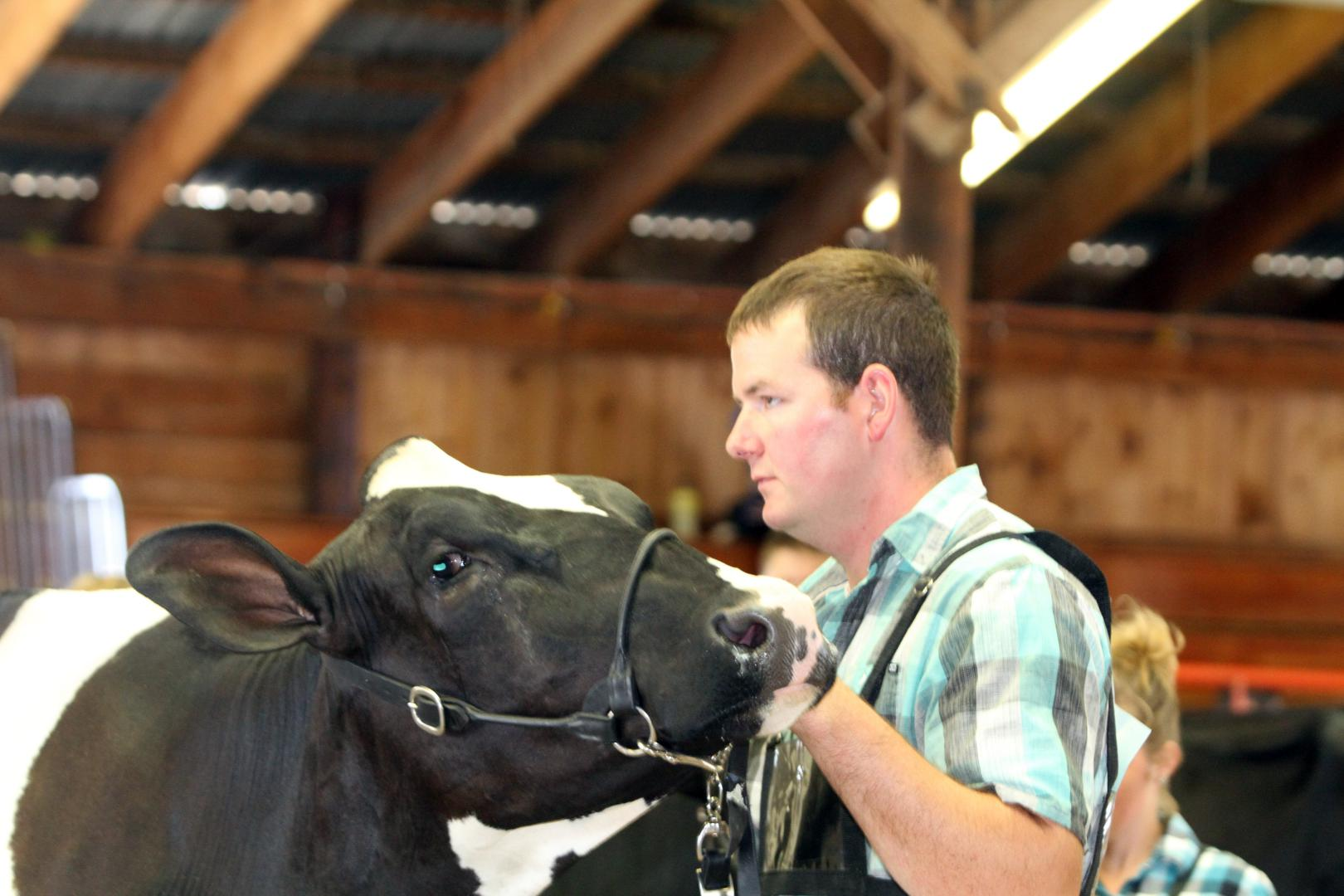 Wisconsin Open Class Dairy Cattle Exhibitor