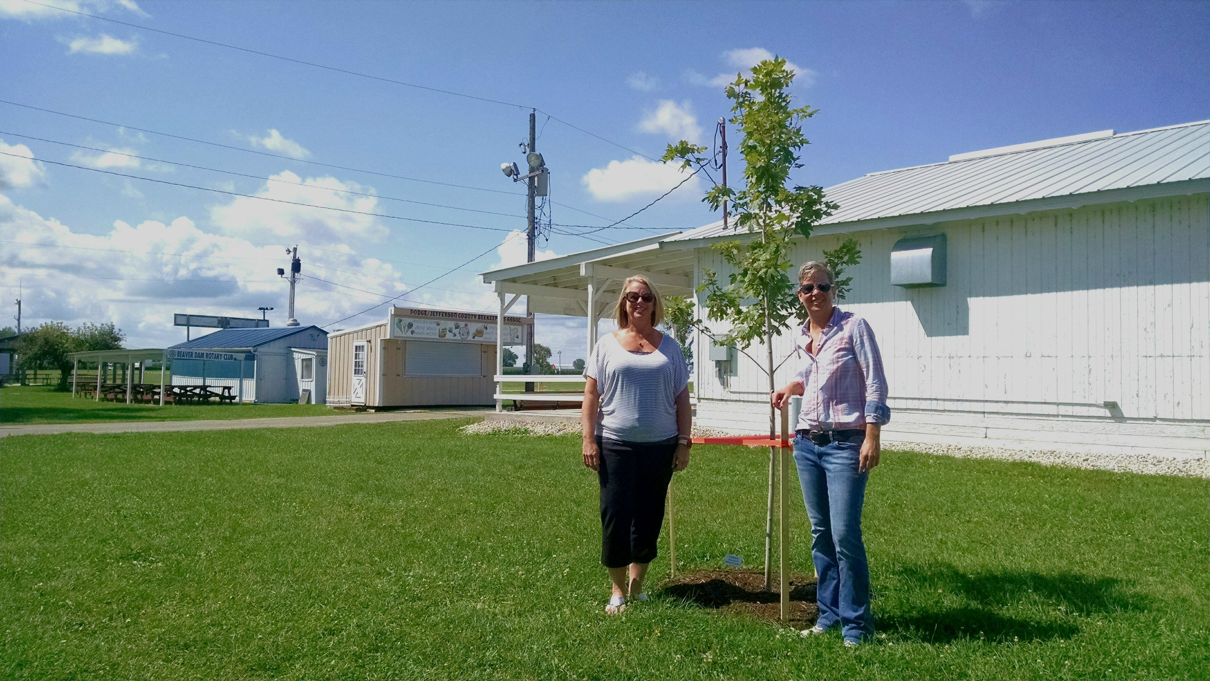 dodge county fair tree donation