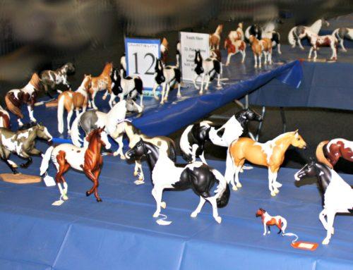 2021 Junior Fair Model Horse Judging Results